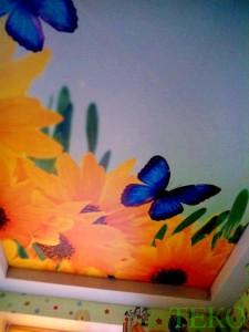 ТЕКО-фотопечать бабочки